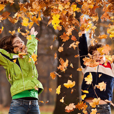 http://www.norvica.ru/files/uploaded/Autumn-Early-Booking-Offers.jpg